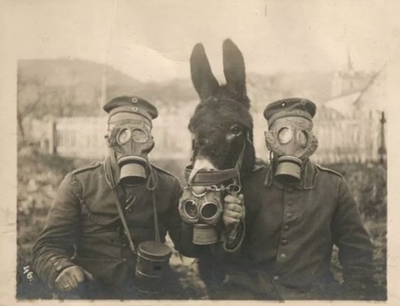 Rare historical photos they didn't show you in school, photos