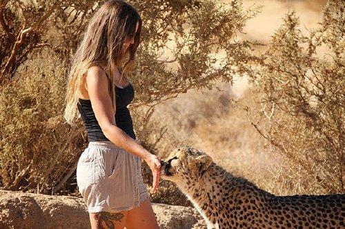 Meet Lisa, the cute wildlife worker who raised a pack of cheetahs, Photos