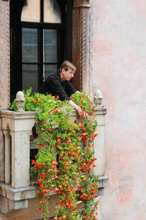 The Man Who Keeps the Isabella Stewart Gardner Museum in Bloom