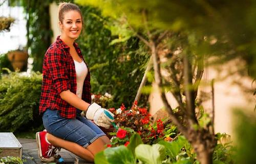 Do Some Gardening