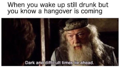 Boozy memes that any beverage enthusiast will relate to 30, Photos