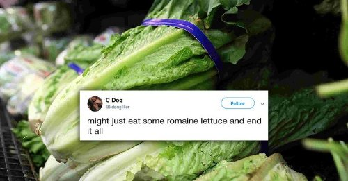 Memes and tweets poking fun of this romaine lettuce ban