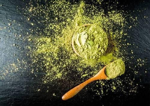 Экстракт Гинкго Билоба (Ginkgo biloba extract)