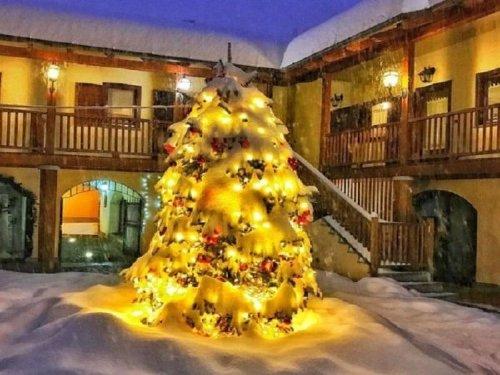 Merry Christmas Everybody! Time to smile!!