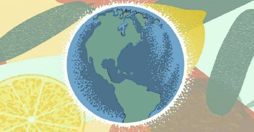 Why the planetary diet, is the wellness regime, to follow if you give, a f*** about the planet