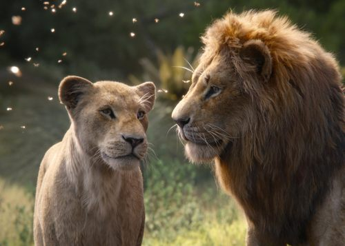 Here Are the Biggest Differences Between the New Lion King Movie and the Original