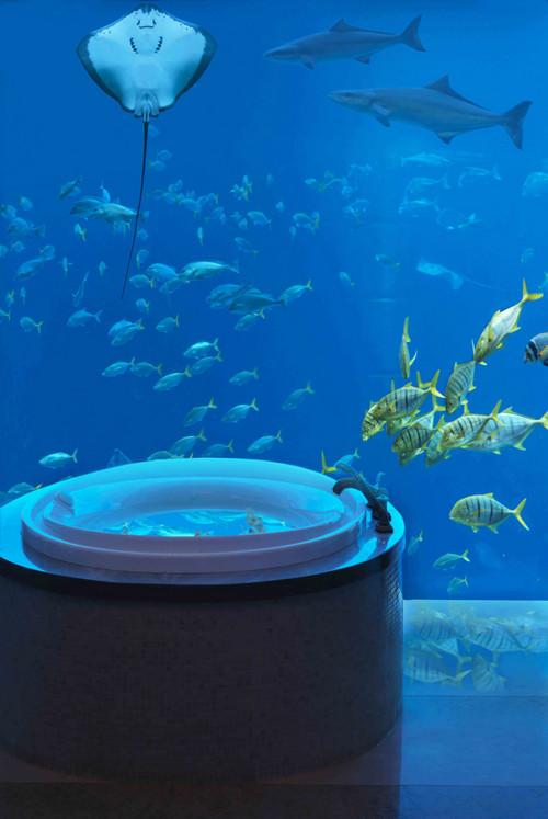atlantisthepalm-underwatersuitesbathroom